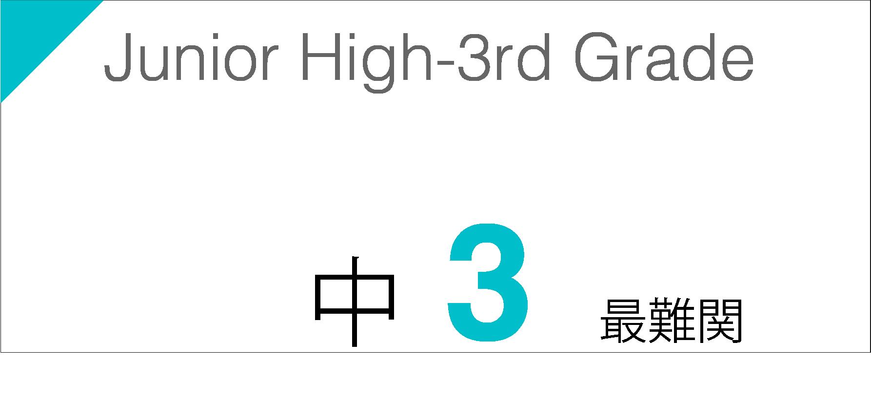 中学3年生最難関の宿題